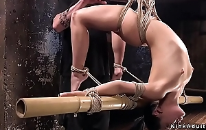 Hogtied cosset divest botheration whipped