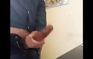 Unfearing pajero