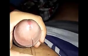 Pau meladinho